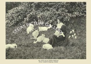Mrs. PETIT with her WHITE PERSIANS (Photo: Cassell & Company, Limited)